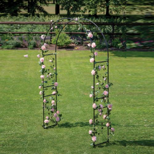 קשת לתמיכת צמחים מטפסים ועיצוב הגינה ממתכת דגם קיסוס