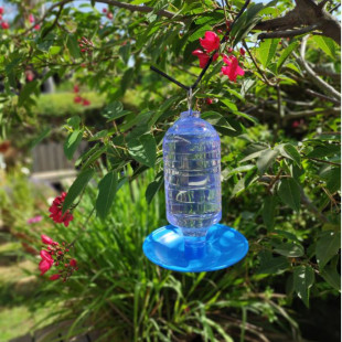 מתקן שתיה לציפורי בר לתלייה בגינה או במרפסת